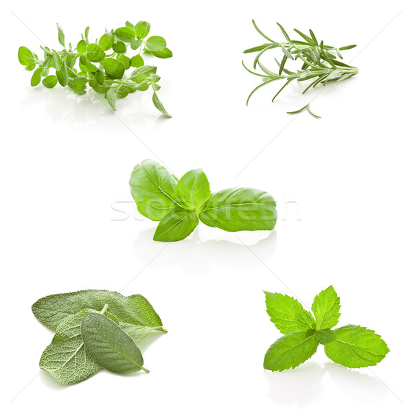 Herbs Collage on white background Stock photo © Francesco83