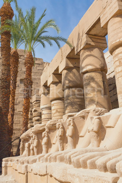 Statues in Karnak temple ( Egypt ) Stock photo © frank11
