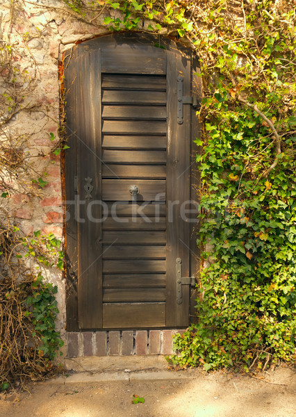 Traditional doors in the spring garden  Stock photo © frank11