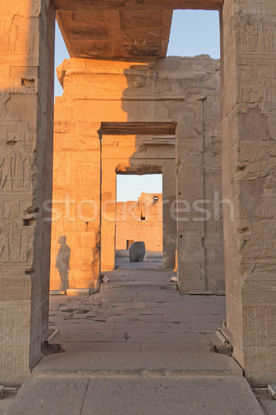 The interior of the Temple of Kom Ombo in sunset light.  Stock photo © frank11