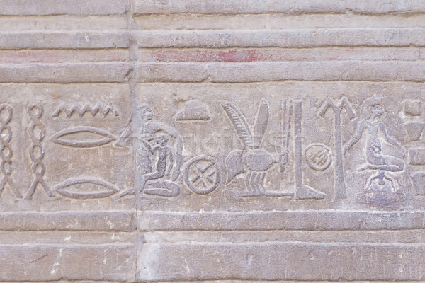 Hieroglyph in The Temple of Kom Ombo ( Egypt)  Stock photo © frank11