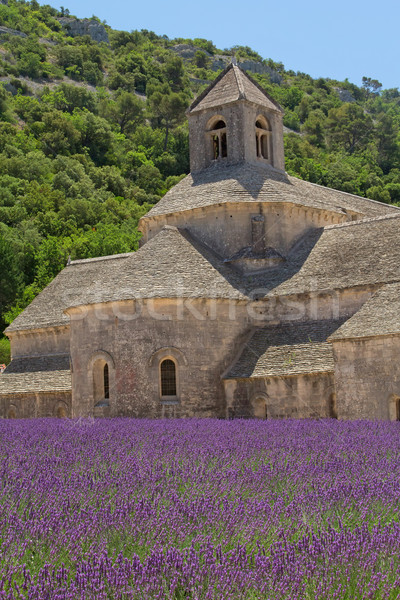 Abadia França aldeia floresta paisagem Foto stock © frank11