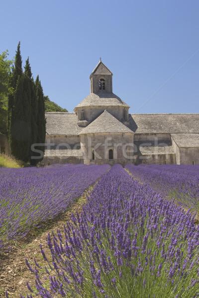 Сток-фото: аббатство · Франция · деревне · лес · пейзаж