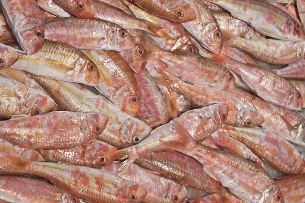 Сток-фото: свежие · красный · продажи · рыбы · рынке · Венеция