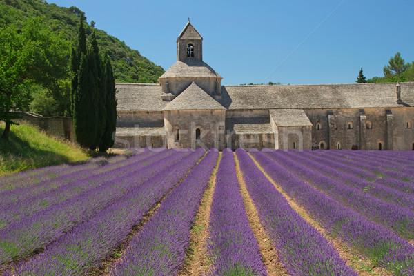 Sénanque Abbey (Provence, France) Stock photo © frank11