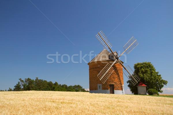 кирпичных Windmill области кукурузы Blue Sky Чешская республика Сток-фото © frank11