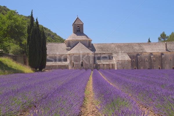 Abadía Francia pueblo forestales paisaje mundo Foto stock © frank11
