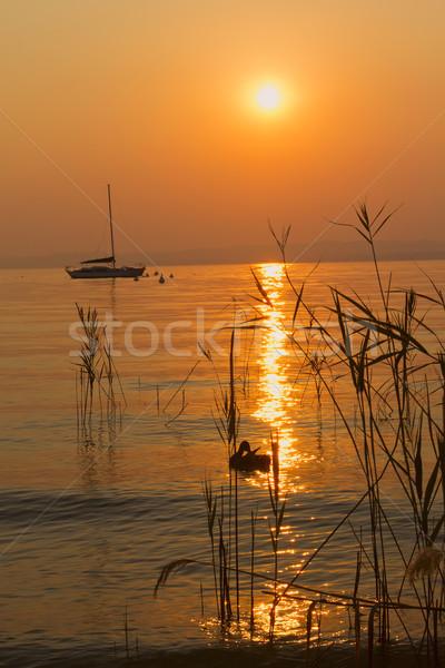 Romantic sunset on Lake Garda (Italy)  Stock photo © frank11