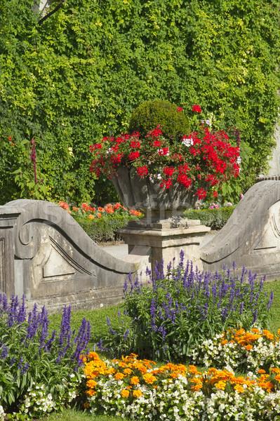 Floral decoración jardín verano casa ciudad Foto stock © frank11