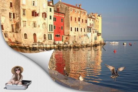 Rovinj - port with flying birds (Croatia) Stock photo © frank11