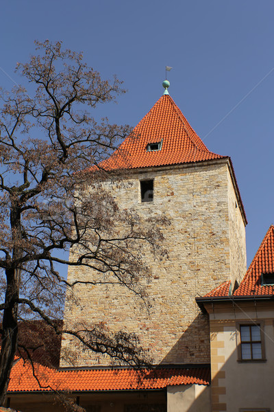 Prague Castle. Daliborka Tower. (Czech Republic) Stock photo © frank11