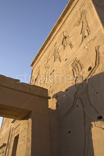Сток-фото: стены · храма · Египет · острове · закат · свет
