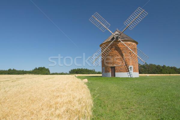 Baksteen windmolen veld mais blauwe hemel Tsjechische Republiek Stockfoto © frank11