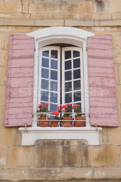 伝統的な フランス語 ウィンドウ ピンク 花 ストックフォト © frank11