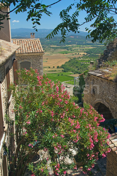 Stock photo: A view of Provencal countryside.
