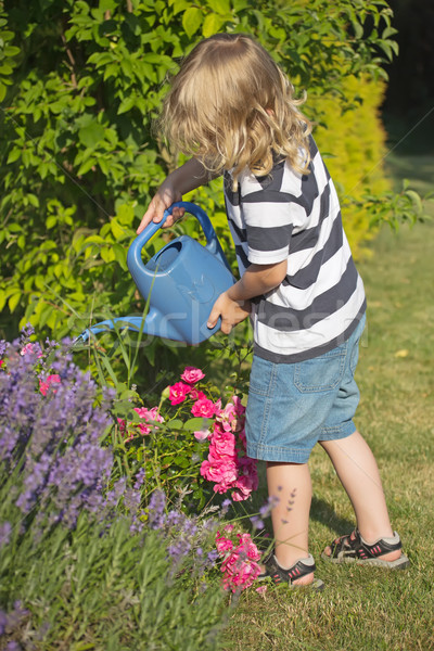 Сток-фото: мальчика · синий · банка · цветы