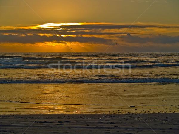 Tramonto Ocean onde primo piano spiaggia Foto d'archivio © Frankljr