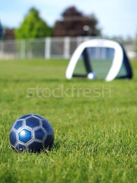 Stockfoto: Blauw · voetbal · doel · veld · groen · gras