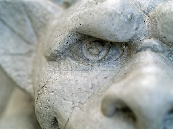 Gargoyle Statue Stock photo © Frankljr