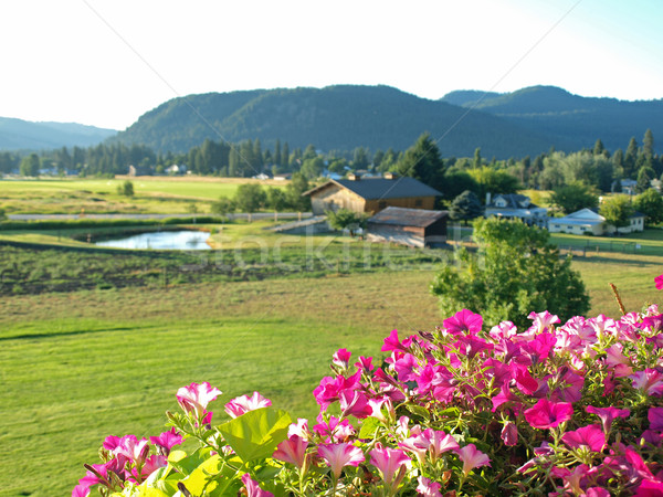 A Mountain Country View From a Flowery Balcony Stock photo © Frankljr