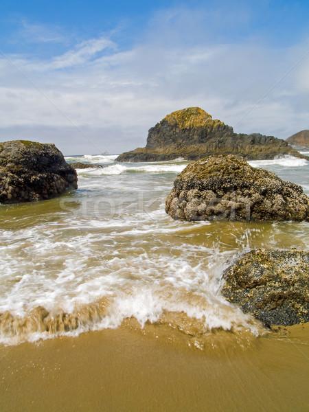 Hochwasser Oregon Küste Landschaft Meer Sommer Stock foto © Frankljr