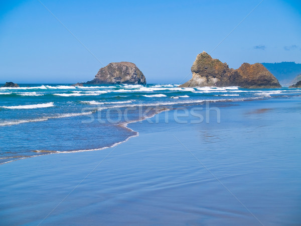 Rugged Rocky Arcadia Beach on the Oregon Coast Stock photo © Frankljr