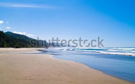 Oceano ondas costa natureza mar Foto stock © Frankljr
