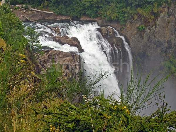 Hermosa montana cascada Washington EUA agua Foto stock © Frankljr