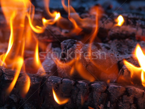 Flames and Glowing Embers in a Campfire Stock photo © Frankljr