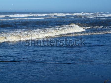 Okyanus dalgası kıyı su deniz yaz Stok fotoğraf © Frankljr