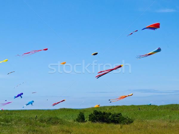 Kleurrijk vliegen heldere blauwe hemel voorjaar Stockfoto © Frankljr