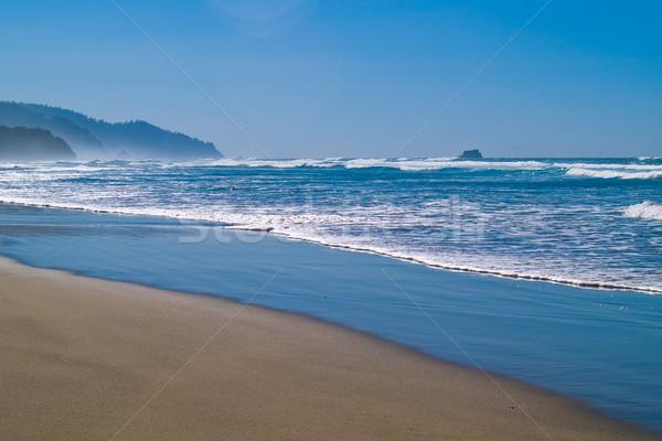 Okyanus dalgalar kıyı doğa deniz Stok fotoğraf © Frankljr