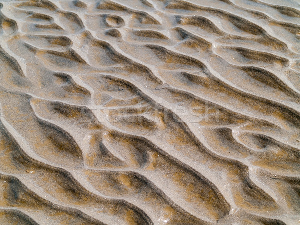 Sand Ripples at the Beach from Waves and Wind Stock photo © Frankljr