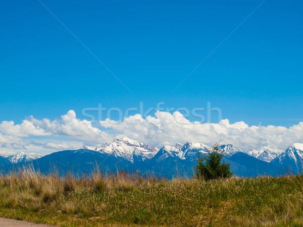 山 表示 にログイン バイソン モンタナ 米国 ストックフォト © Frankljr