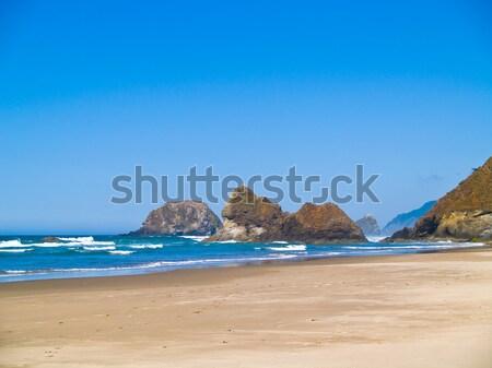Rugged Rocky Arcadia Beach on the Oregon Coast Stock photo © Frankljr