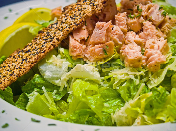 Grilled Salmon Caesar Salad  Stock photo © Frankljr