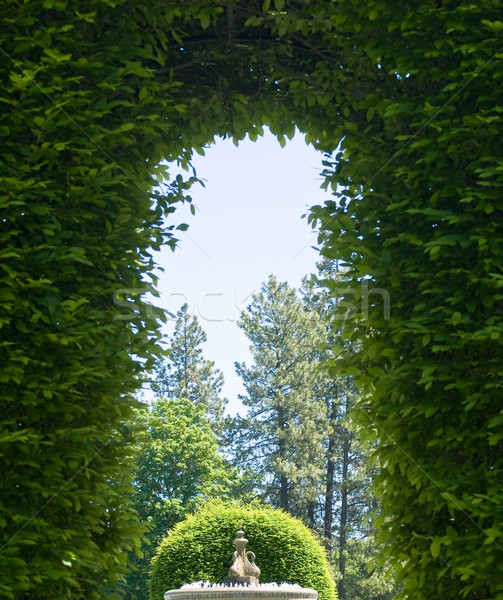 Stockfoto: Outdoor · park · pad · tuin · groene