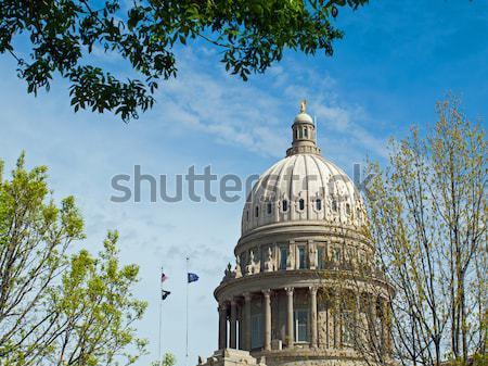 Stany Zjednoczone Capitol budynku Washington DC miasta architektury biały Zdjęcia stock © Frankljr