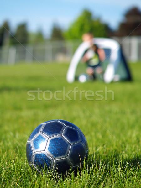 Stockfoto: Blauw · voetbal · spelers · veld · groen · gras