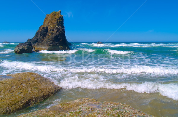 Rocky Beach with Waves Crashing on Sand Stock photo © Frankljr