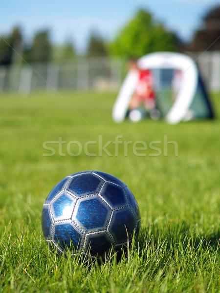 Stock fotó: Kék · futballabda · játékosok · mező · zöld · fű · napos · idő