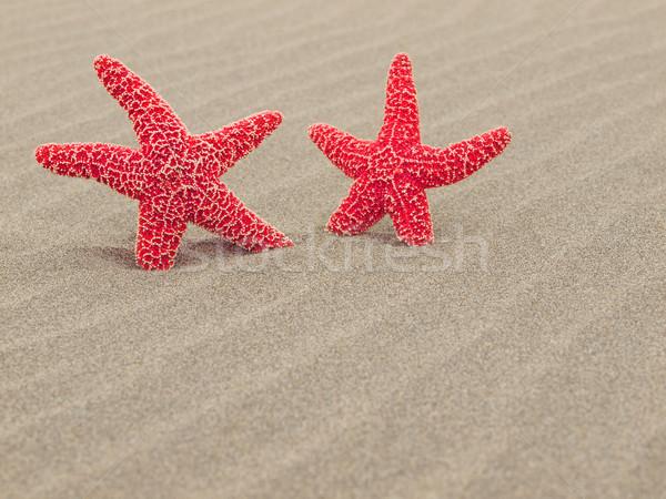 Stok fotoğraf: Iki · kırmızı · denizyıldızı · plaj · kum · balık