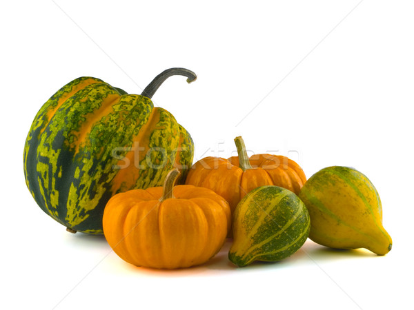 Mini Pumpkins Isolated on a White Background Stock photo © Frankljr