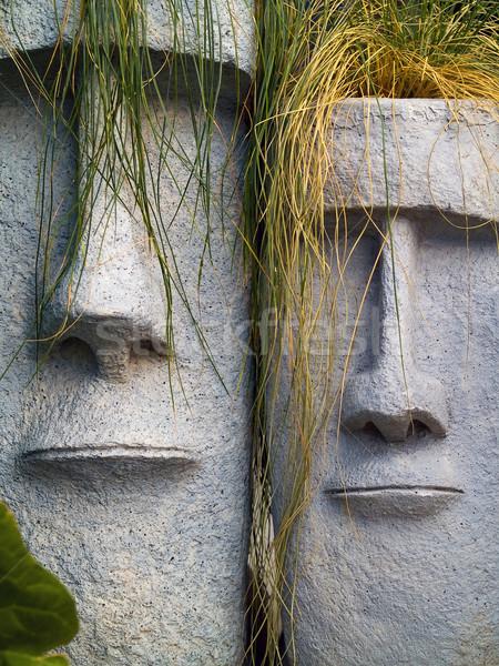 Остров Пасхи долго желтый трава волос лице Сток-фото © Frankljr