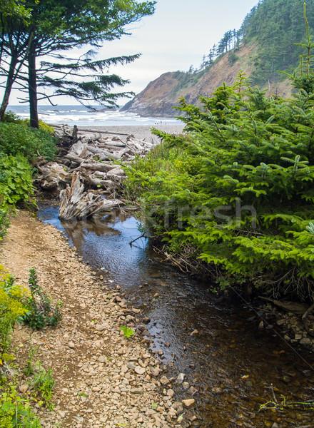 Stream letto rocce verde primavera natura Foto d'archivio © Frankljr