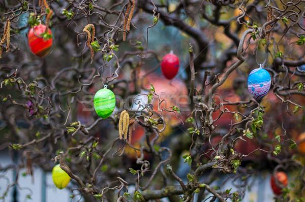 Pâques arbre décoré coloré oeufs Photo stock © franky242