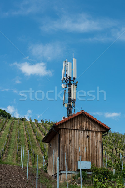Telecommunication mast in a vineyard Stock photo © franky242
