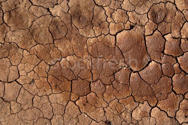 土壌 太陽 ひびの入った カナリア諸島 スペイン ストックフォト © franky242