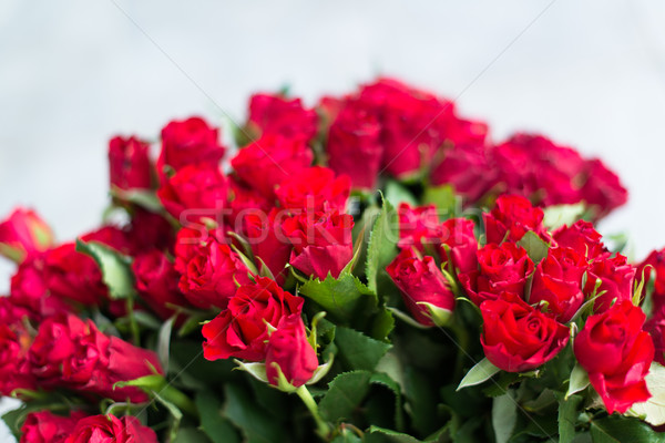 Roses rouges bouquet coup peu profond rose Photo stock © franky242