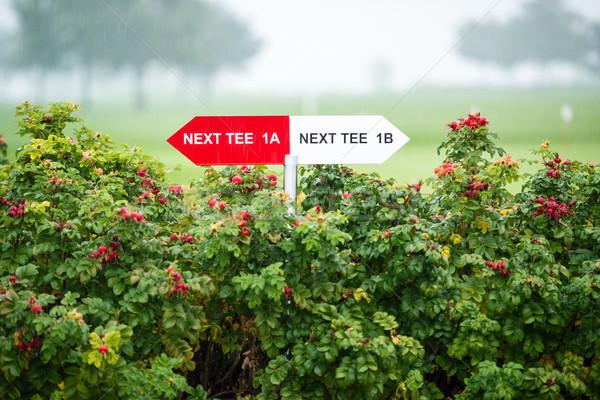 Next tee sign Stock photo © franky242